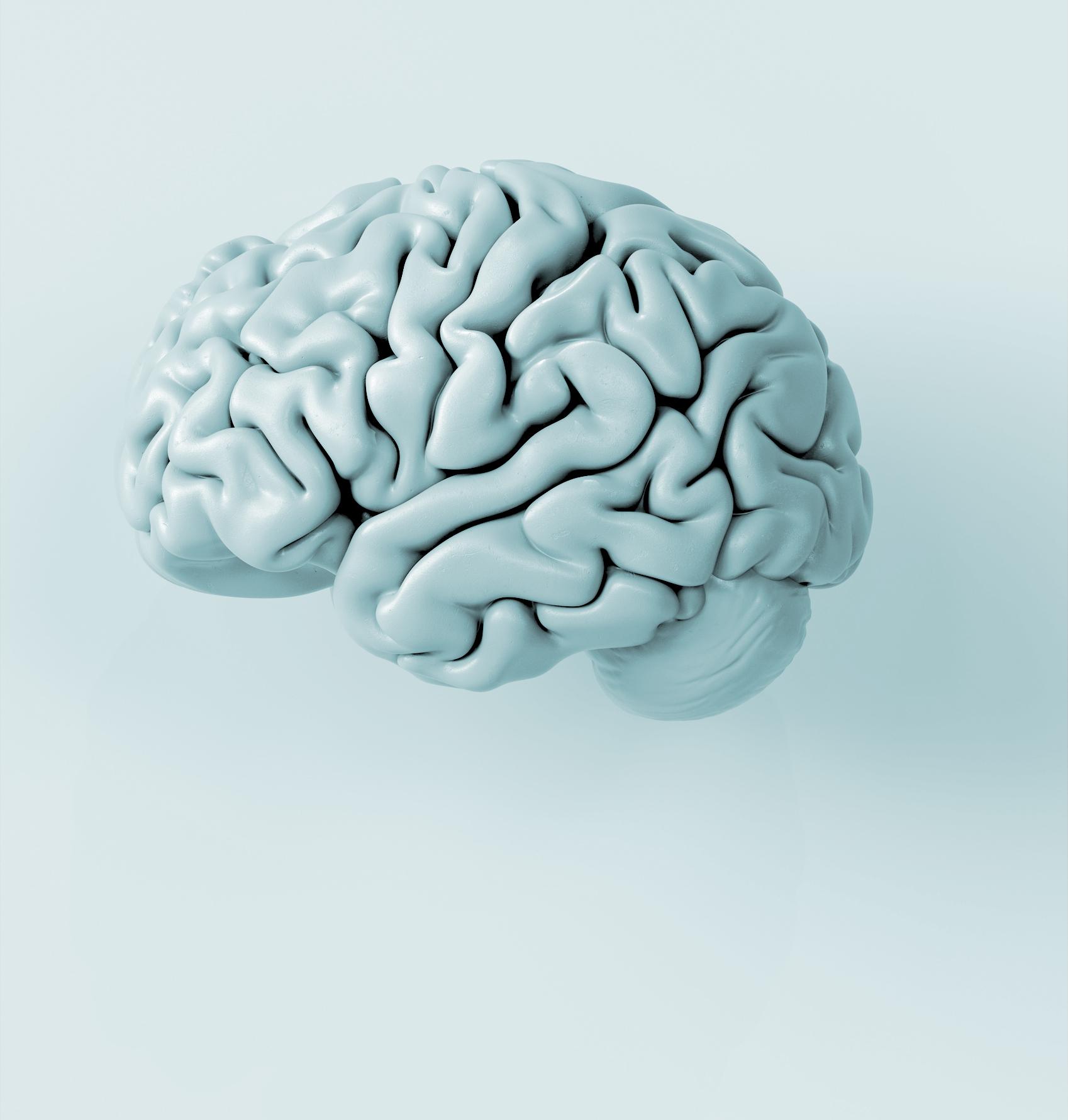 NeuroConsultas